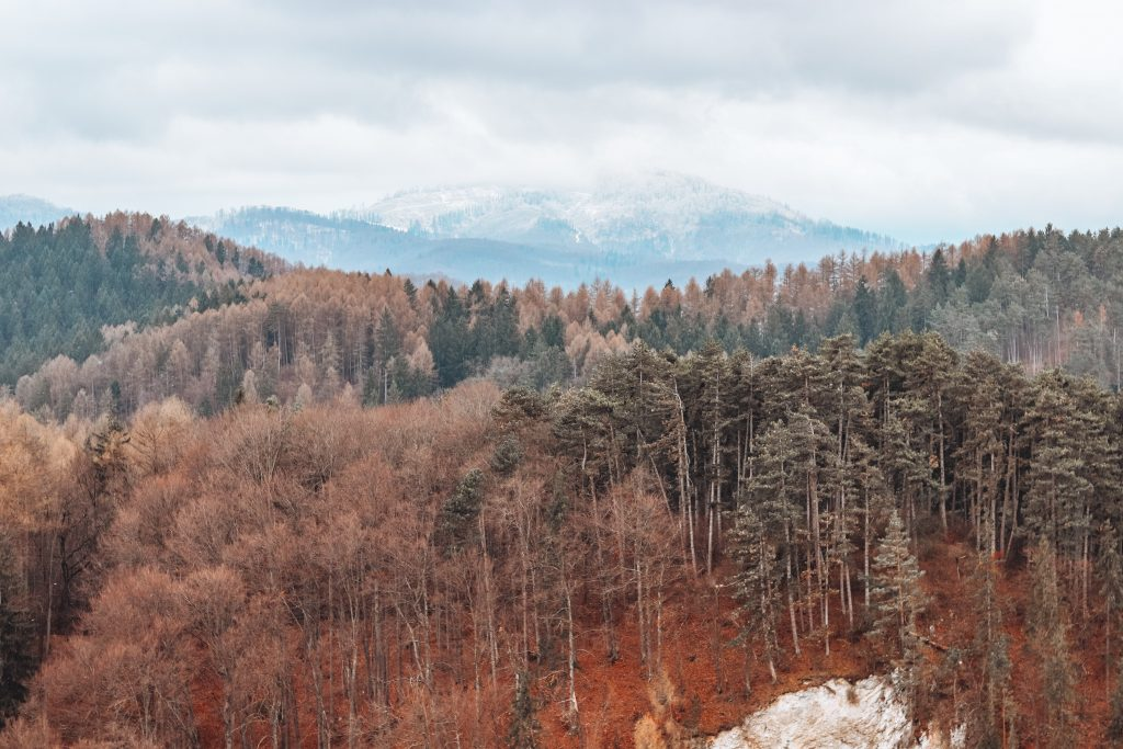 why romania is perfect for digital nomads
